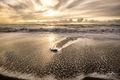 Point Reyes National Seashore, California, beach, shore, fine art, limited, edition, collectors, coast, San Francisco, artist,