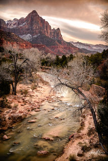 Classic view looking over the Virgin River toward sunset colors on The Watchman in Zion National Park, Utah.