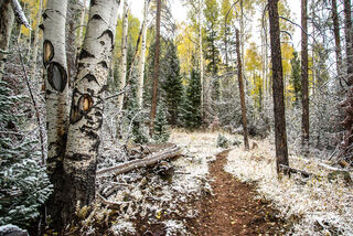 Christmas Meadows, Utah, Wasatch National Forest, autumn, snowfall