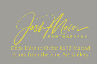 Gallery 8x12 Matted Prints