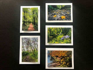 Limited Time Special: 5 Pack Note Cards- Iowa State Parks #2