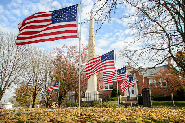 Flags, Iowa, Library, Patriotic, Tipton, Veterans Day, School, Assembly