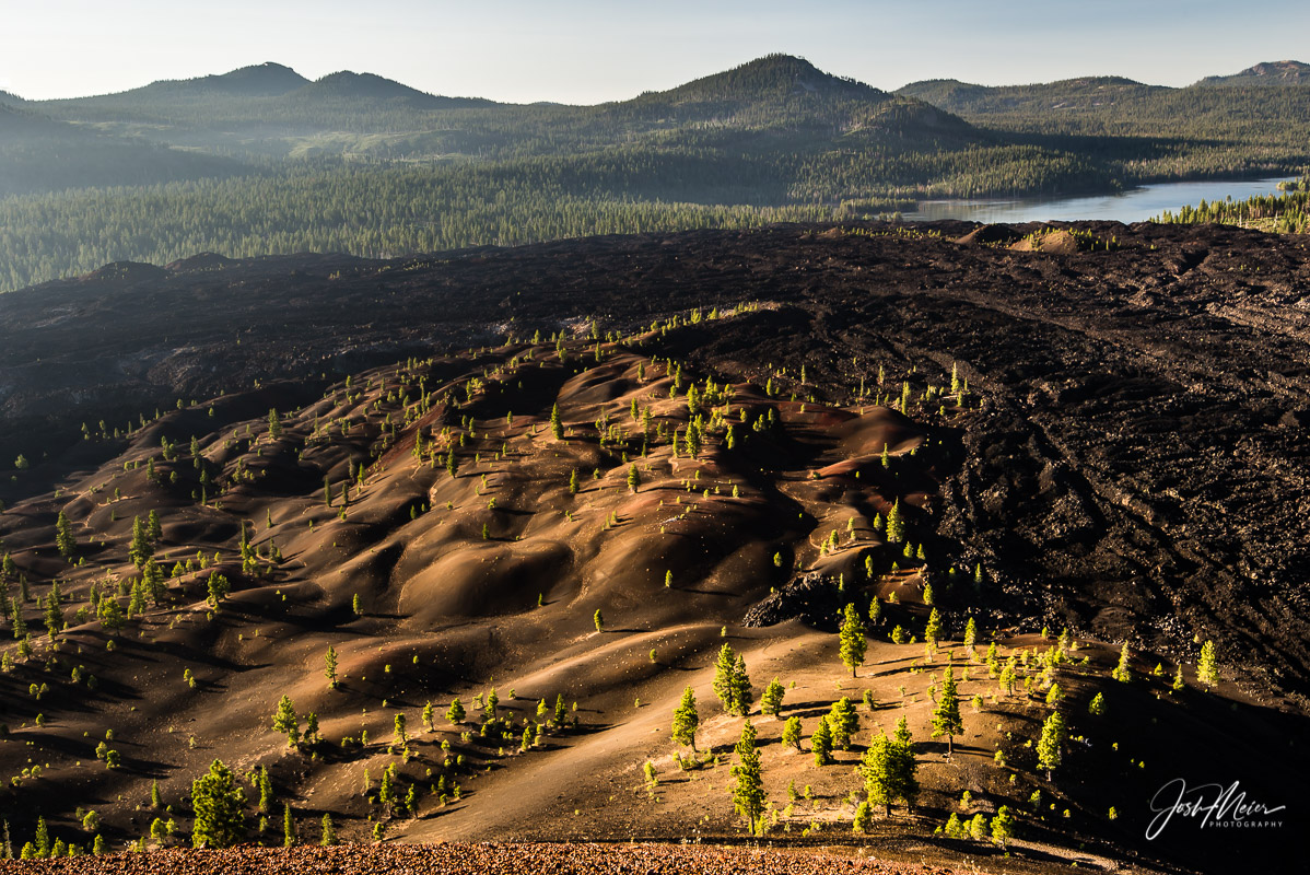 Early morning light illuminates pine trees growing in the Fantastic Lava Beds of Lassen Volcanic National Park, as seen from...
