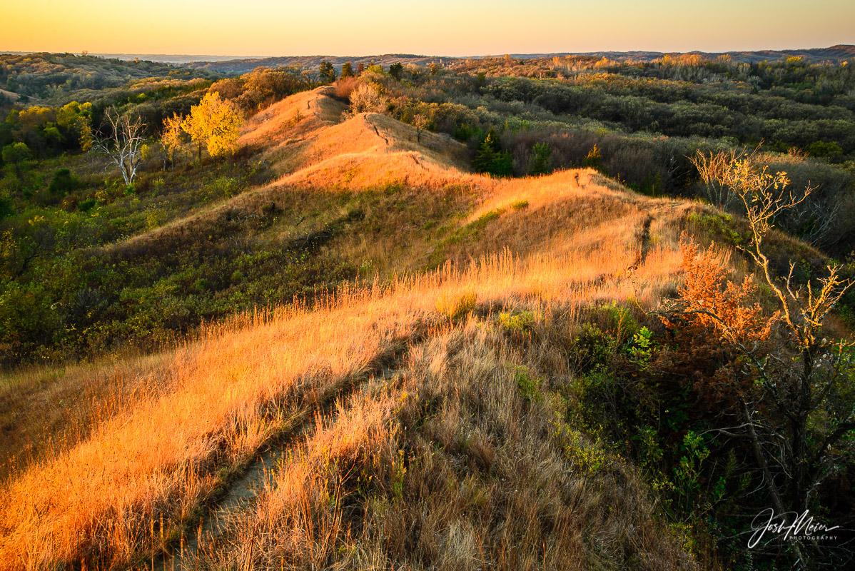 Early morning sunlight works it's way down a ridgeline in the Loess Hills of western Iowa. A landscape so geologically unique...