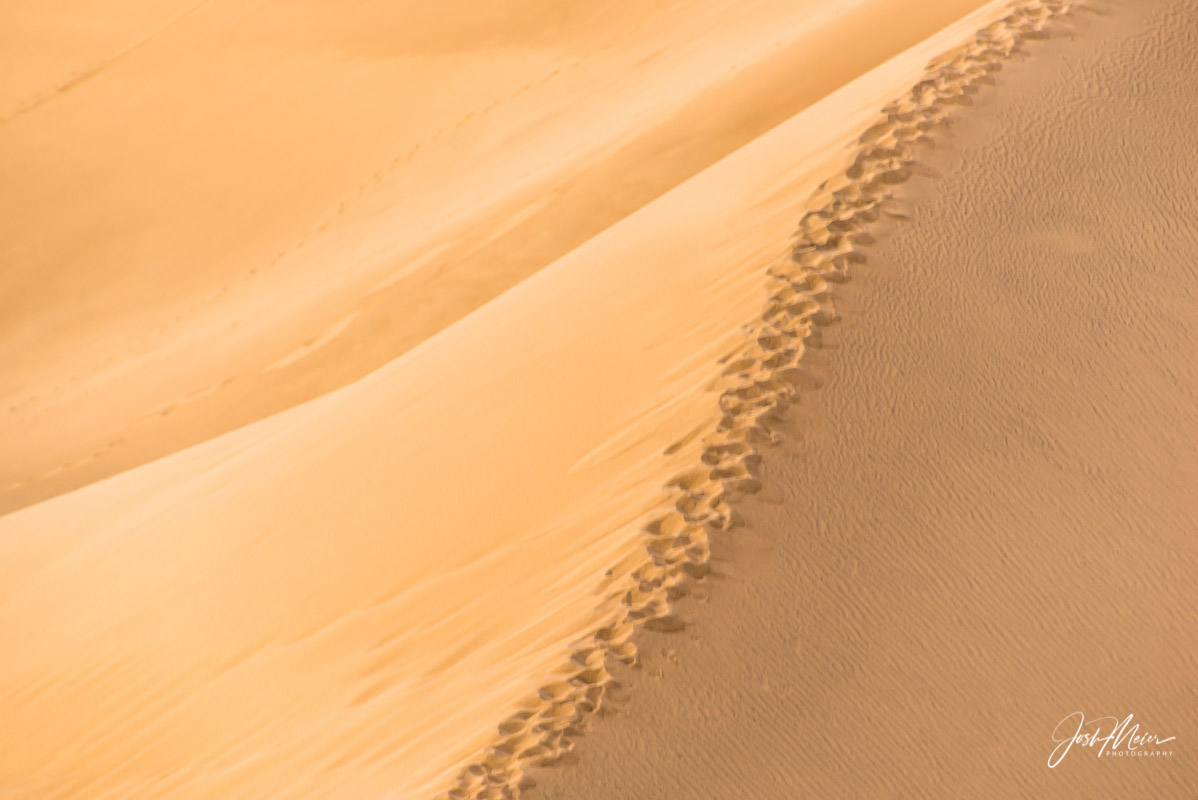 A single line of footprints crossing the wind-shaped Mesquite Flats Sand Dunes in Death Valley National Park, California.