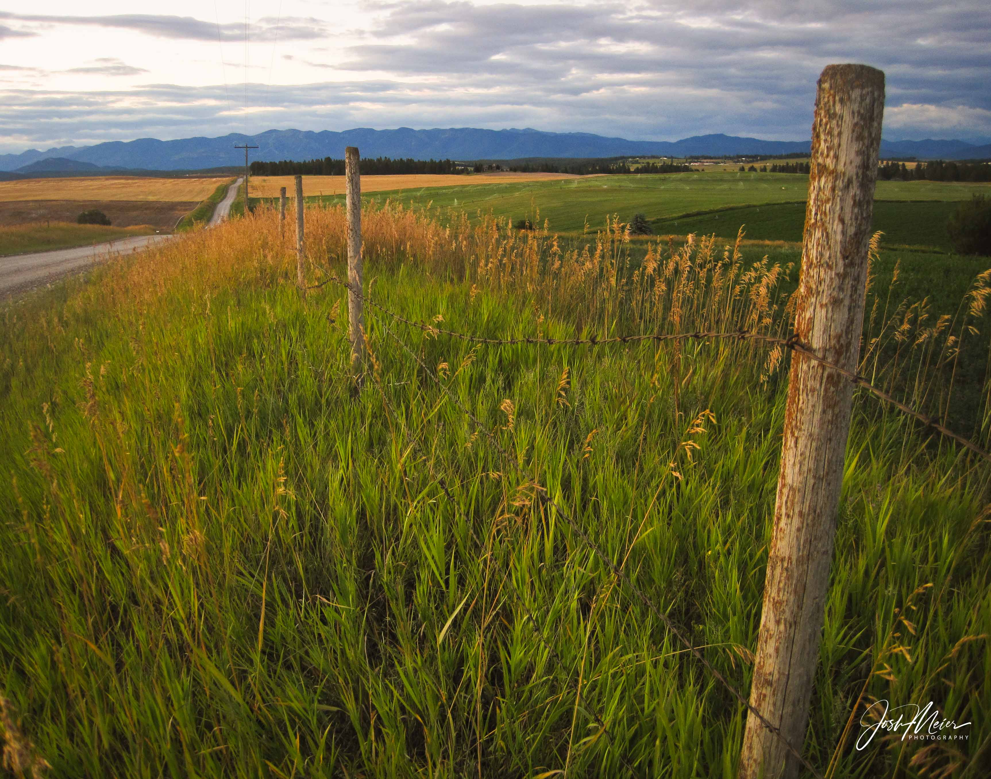 Greens and golds of late summer in the Flathead Valley, with a fence line and country road west of Kalispell, Montana, and the...