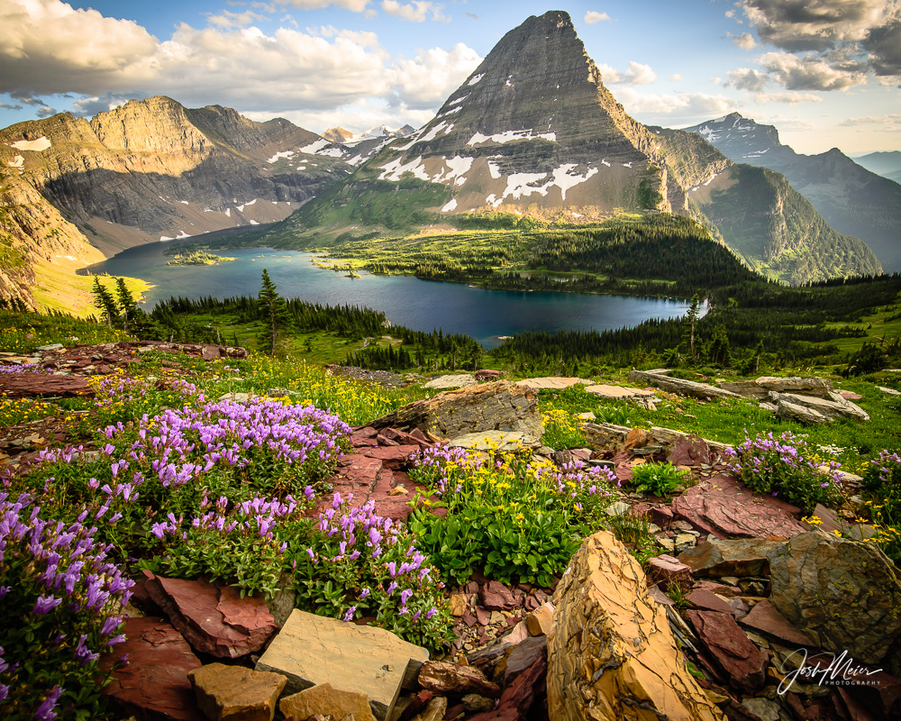 Alpine wildflowers accent this picturesque view, looking upon Hidden Lake and Bearhat Mountain on a Montana summer's eve.