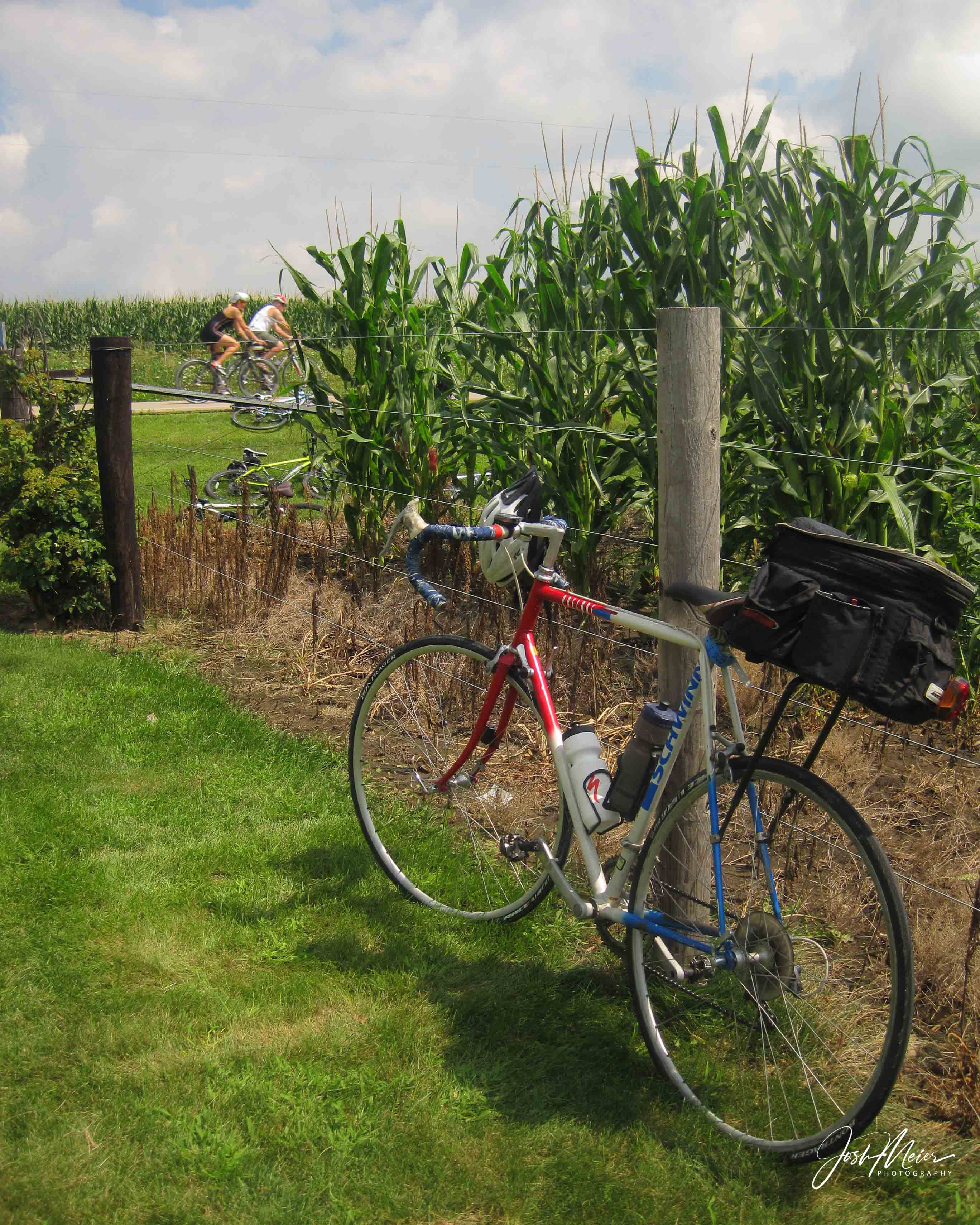 A classic Iowa summer scene- a vintage Schwinn touring bike parked beside a cornfield with other cyclists passing in the background...