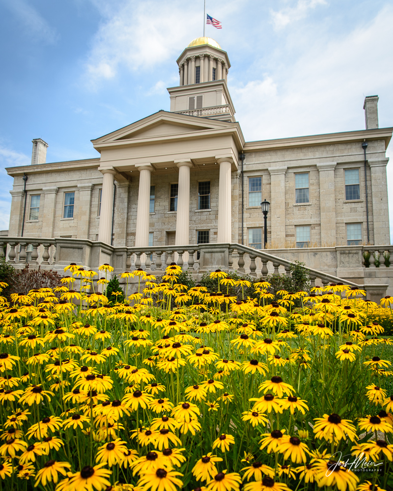 Landscaping around the stately Old Capitol building on the University of Iowa campus proudly reflects the schools black and gold...