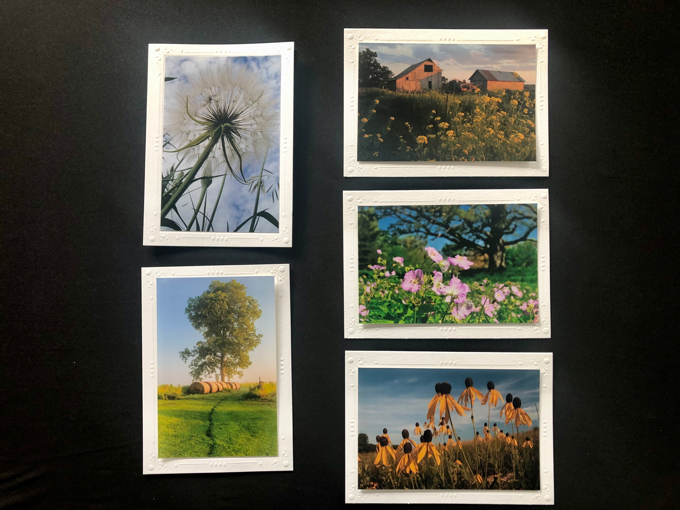 Limited Time Special: 5 Pack Note Cards- Classic Iowa #2