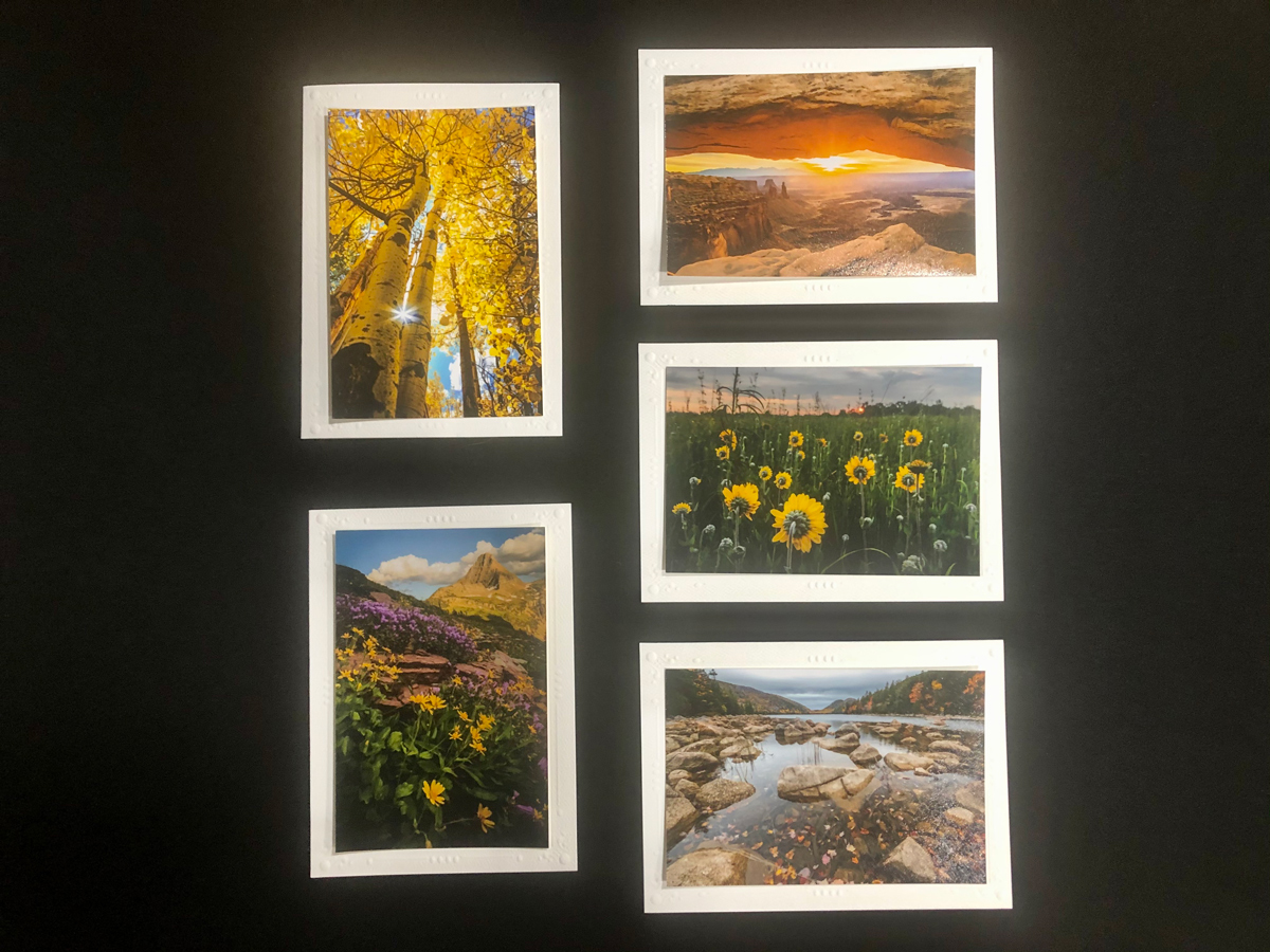 Limited Time Special: 5 Pack Note Cards- National Parks #4
