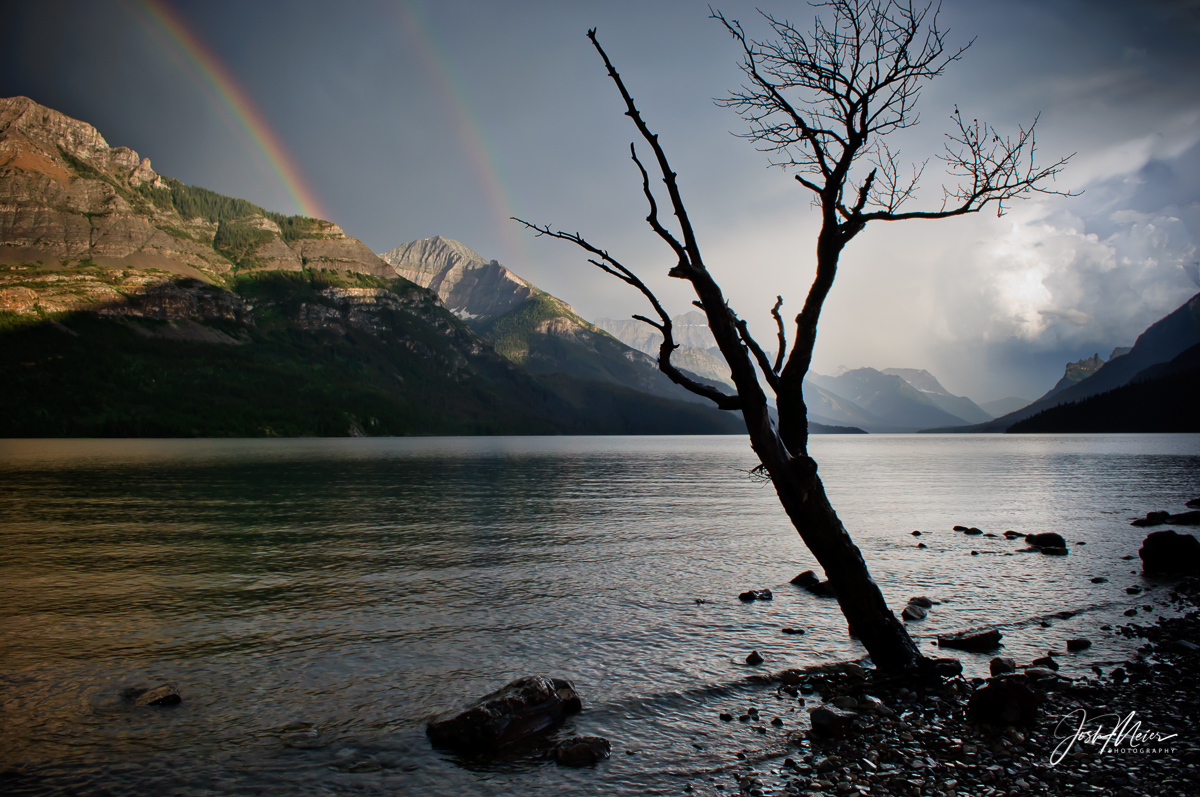 The interplay of light and dark as a rainbow forms in wake of a passing storm in Waterton Lakes National Park, Alberta.